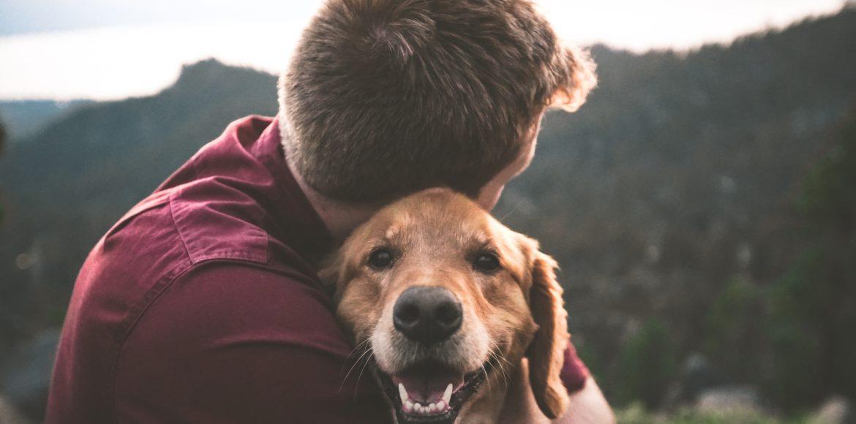 Un homme tenant un chien de la race golden retriver dans ses bras